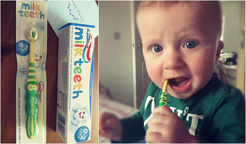Toothbrush collagejpg