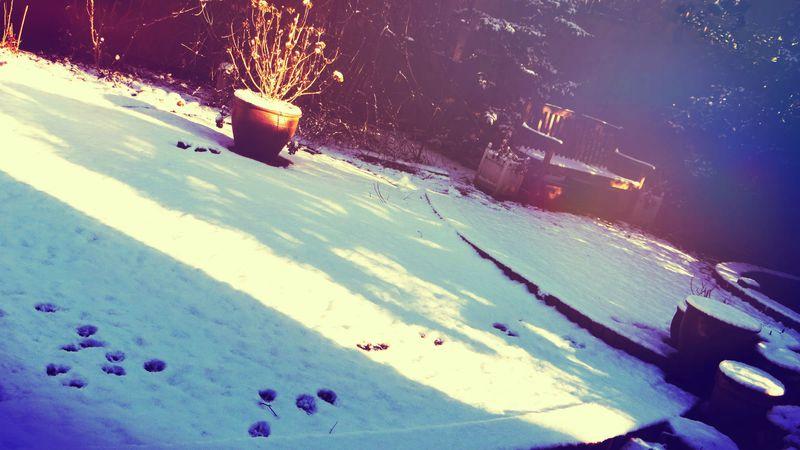 BeFunky_snow.jpg
